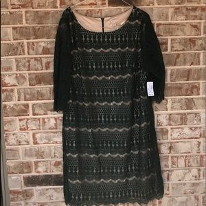 Sz 22W Forest Green Lace Holiday Dress